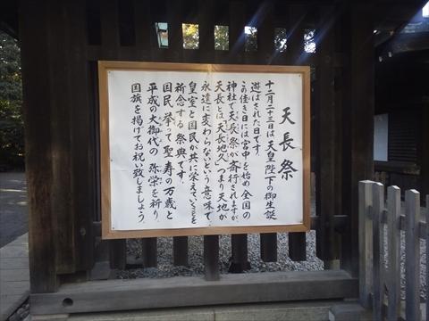 NCM_0365_Rz.JPG
