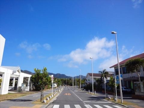 NCM_0859_R.JPG